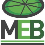 La MEB ante las elecciones generales