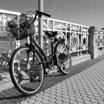 Encuentros cicloturistas vascos