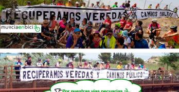 Murcia: Acción en defensa de los caminos públicos y vías pecuarias